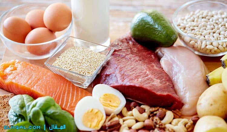 البروتين protein