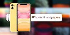 صور : خلفيات ايفون 11 الرسمية iPhone 11 Pro Wallpapers أعلى جودة