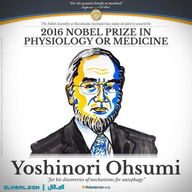 يوشينوري أوسومي - جائزة نوبل