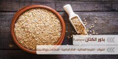 فوائد بذور الكتان Flaxseed والقيمة الغذائية