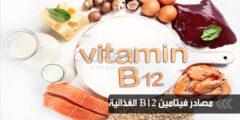 مصادر فيتامين B12 الغذائية
