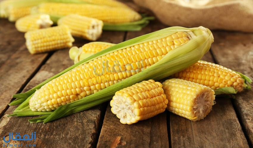 فوائد الذرة الصحية وقيمتها الغذائية