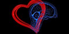 مكونات الذكاء العاطفي والكفاءات التي يتطلبها