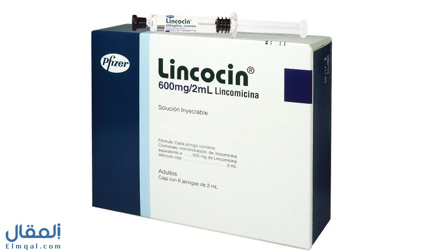 لينكوسين حقن LINCOCIN؛ مضاد حيوي لعلاج التهابات العظام والمفاصل والتهابات الدم