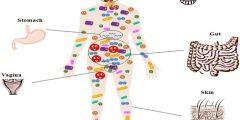 أنواع البكتيريا في جسم الإنسان بين الضرر والنفع