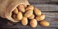 طرق تخزين البطاطس الصحيحة ومخاطرها الصحية