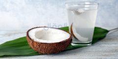 فوائد ماء جوز الهند الصحية وقيمتها الغذائية
