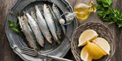فوائد السردين Sardines الصحية وقيمته الغذائية