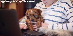 اختر اسم مناسب ومميز لكلبتك وتعرف على معناه