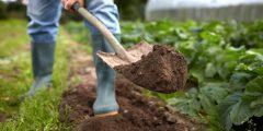 تفسيرات ودلالات حفر التراب في المنام
