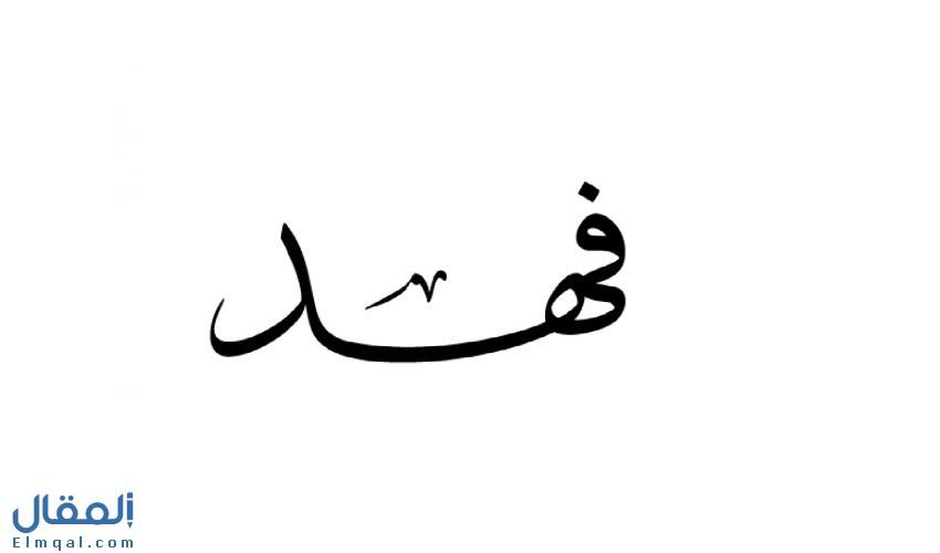 تفسيرات ودلالات اسم فهد في المنام